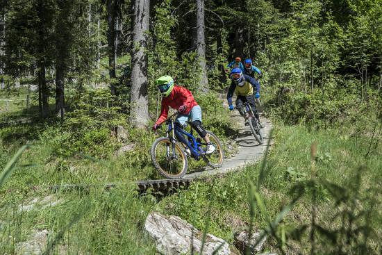 Mountainbike-Park Wagrain - Sommerurlaub - Wagrain - Kleinarl - Salzburger Land - Ferienwohnungen - Ortnerbauer