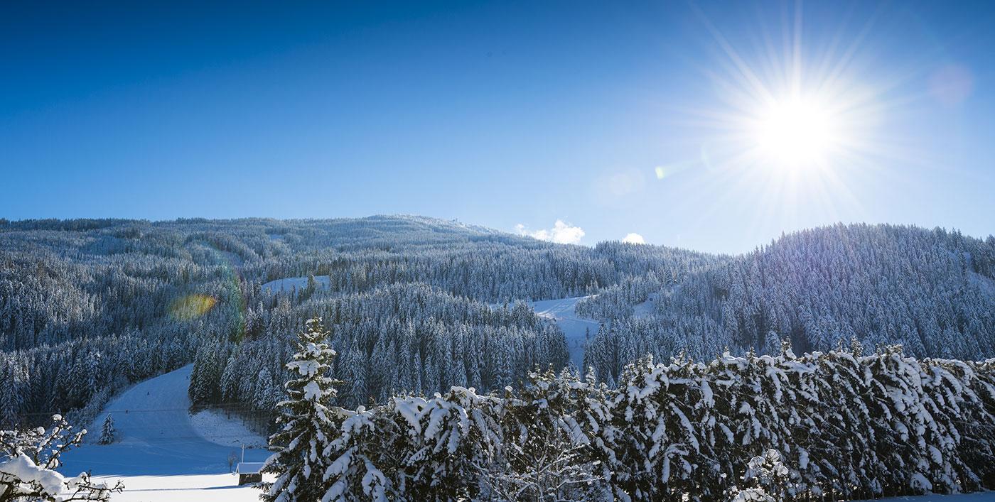 winter-urlaub-auf-dem-bauernhof-wagrain-ortnergut-8
