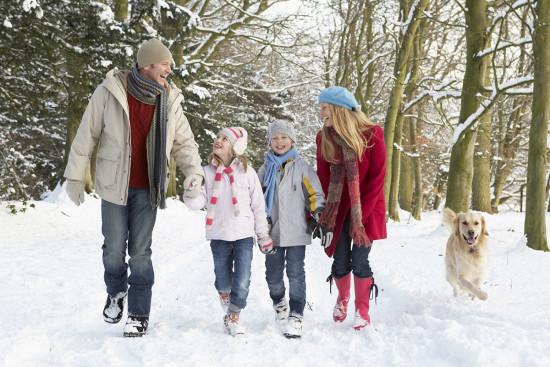 Winterwandern - Winterurlaub - Wagrain - Salzburger Land - Zimmer - Ferienwohnungen - Ortnerbauer